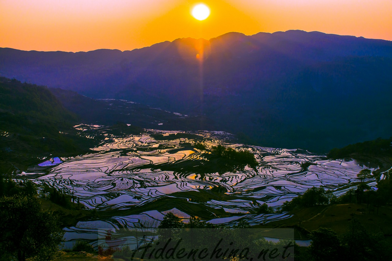 Photo orgy in the hani honghe yuanyang rice terrace fields for 100 rice terrace drive columbia sc